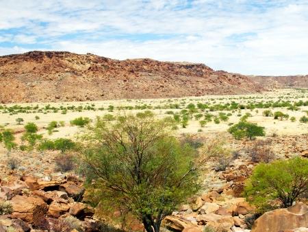 Peintures rupestres et éléphants du désert ! (325 km)