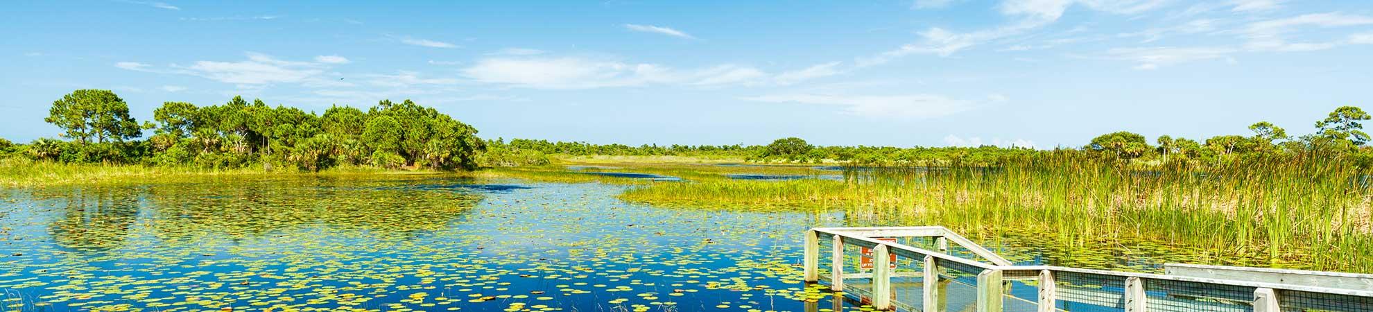 Voyage en Floride Tout Inclus