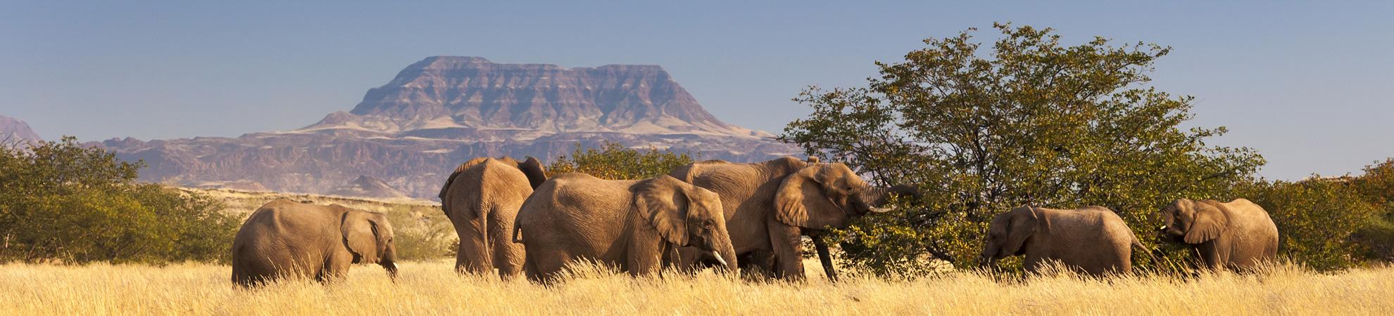 Voyage Namibie Budget